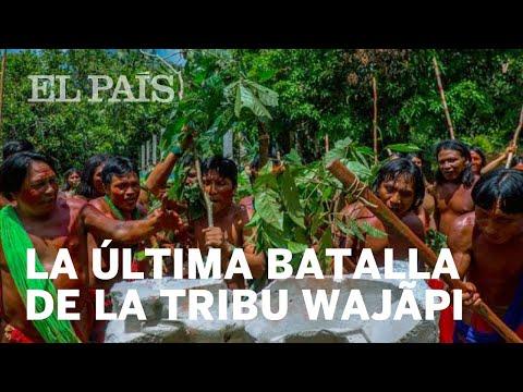 La última batalla de la tribu wajãpi contra el hombre blanco